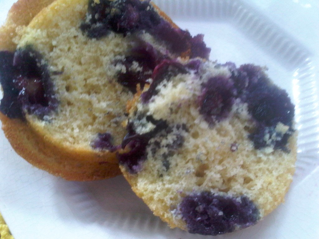 photo 81 1024x768 To Die For Blueberry Muffins